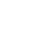 logo-das-header-white